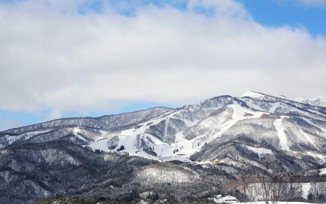 お値打ち日帰りバスプラン!<br>ボード&スキー<br>≪ひるがの高原スキー場≫